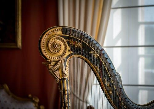 Découvrez la harpe et toutes ses techniques